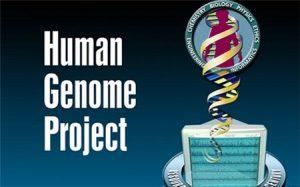 基因组计划